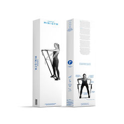Swedish Posture Mini Gym